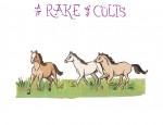 New Artwork – Ian Rogers – a Rake of Colts