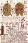 Guillermo de Toro - Hellboy sketch