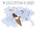 New Artwork – Ian Rogers – an Exultation of Larks